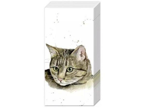 Taschentuch Ihr Farmfriends Cat, 10Stk