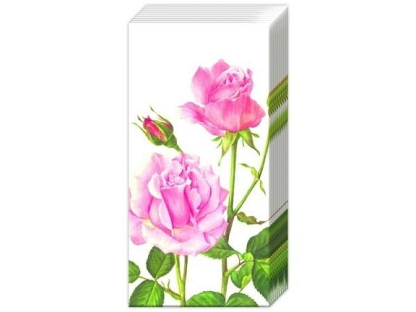 Taschentuch Ihr A Rose for you, 10Stk. bedruckt