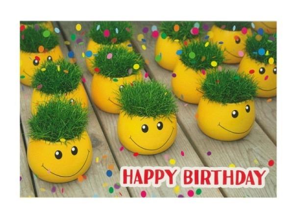 Geburtstagskarte Hartung Moments Blumentöpfe Smiley 12x17cm
