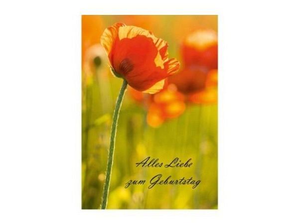 Geburtstagskarte Caroline Gardner Kimono To you Floral 14,6x14cm