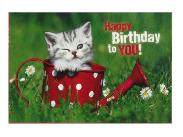 Geburtstagskarte Hartung Katze in roter Spritzkanne