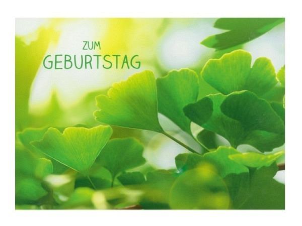 Geburtstagskarte Hartung Moments Zum Geburtstag - grüne Blätter