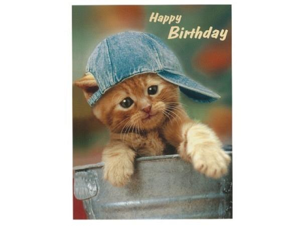 Geburtstagskarte Hartung Moments Happy Birthday - Katze mit Jeans-Mütze