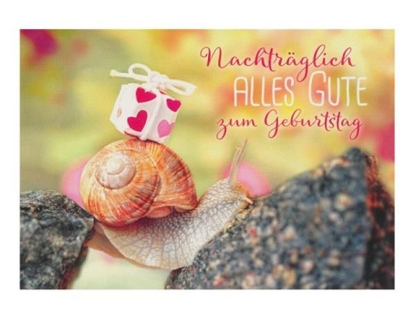 Geburtstagskarte Hartung Moments Nachträglich alles Gute zum Geburts..
