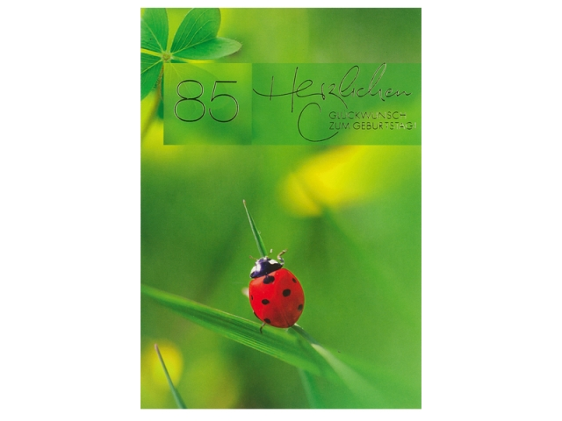 Geburtstagskarte Abc 85 Zahlengeburtstag Marienkafer