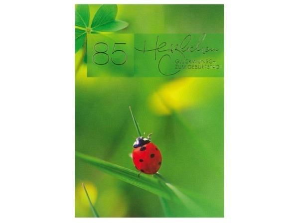 Geburtstagskarte ABC 85 Zahlengeburtstag Marienkäfer