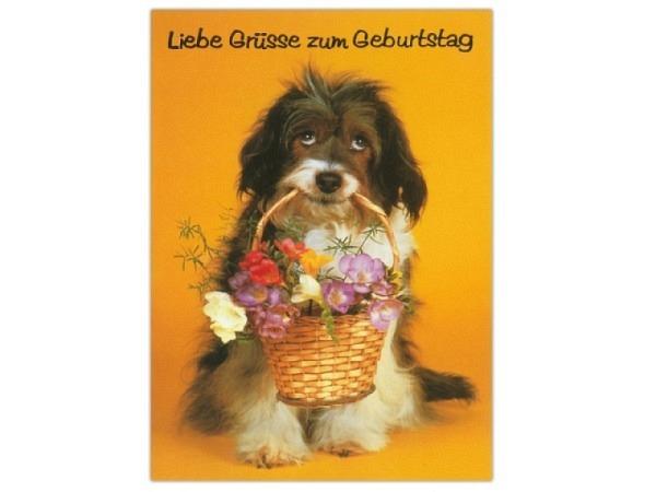 Geburtstagskarte ABC Hund mit Blumenkorb 11,5x17cm