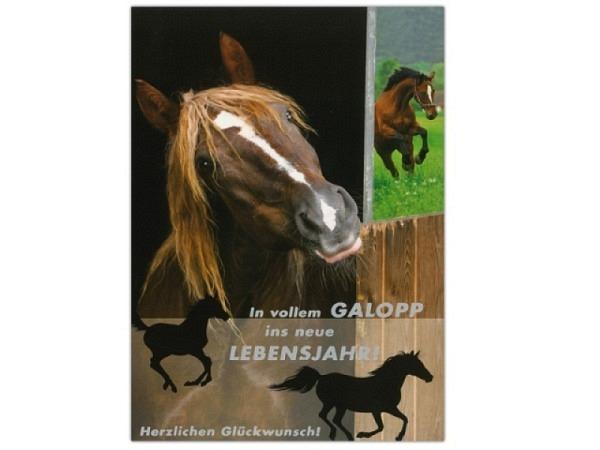 Geburtstagskarte ABC Pferdestall 11,5x17cm