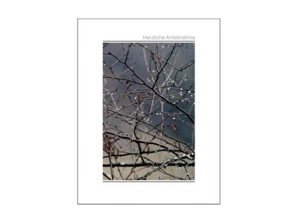 Trauerkarten Imago Äste 13,8x18cm