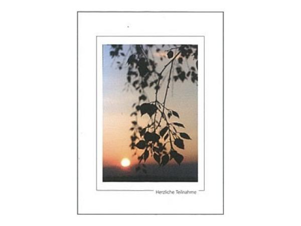 Trauerkarte Art Bula 13x18cm Ast im Sonnenuntergang