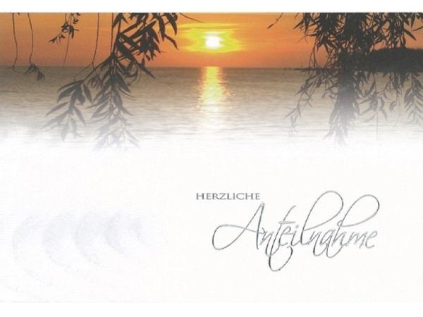 Trauerkarte Borer Trauerweide Sonnenuntergang, Wasser, Ästen
