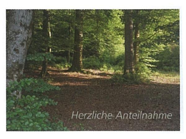 Trauerkarte Art Bula 12,2x17,5cm Lichtung im Wald