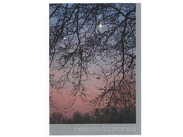 Trauerkarte Art Bula 12,2x17,5cm Äste, Abendrot, grauer Rand
