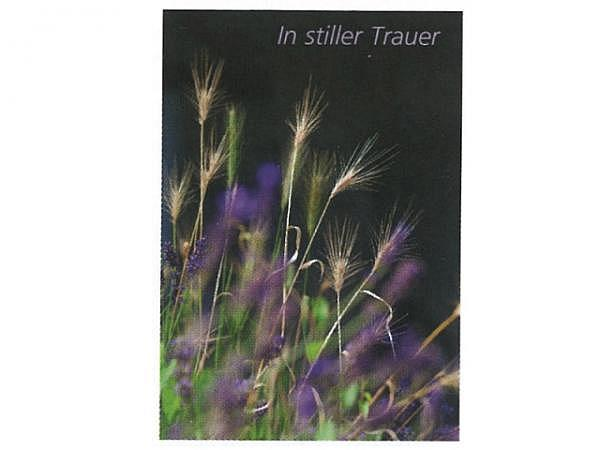 Trauerkarte Art Bula 12,2x17,5cm Gräser, In stiller Trauer