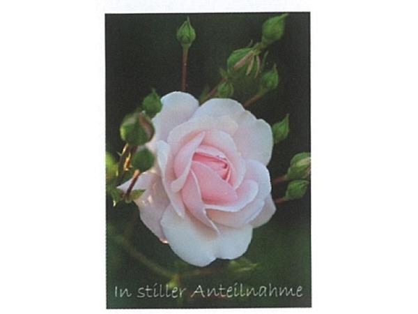 Trauerkarte Art Bula 12,2x17,5cm rosa Rose