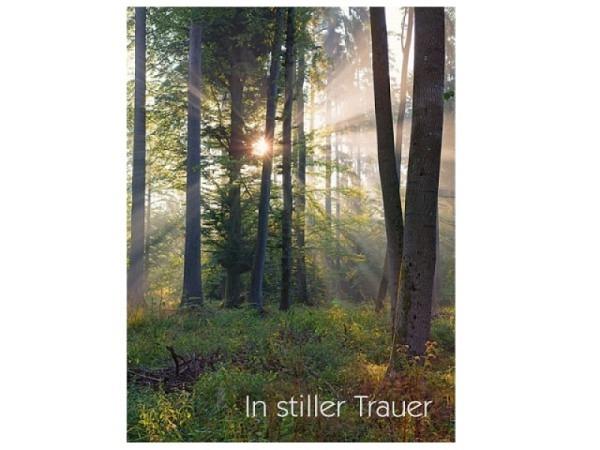 Trauerkarte Art Bula 12,2x17,5cm Wald, Sonne scheint durch
