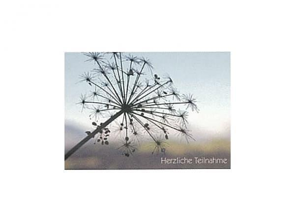Trauerkarte Art Bula 12,2x17,5cm verwelkte Blüte