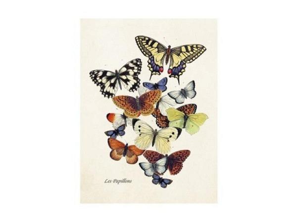 Doppelkarte Sköna Ting Vintage Schmetterling 8,5x11,5cm