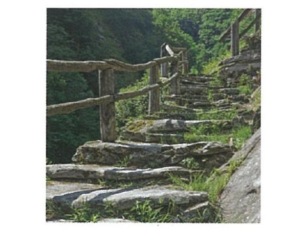 Karte Art Bula 16,8x16,8cm, Steintreppe als Waldweg