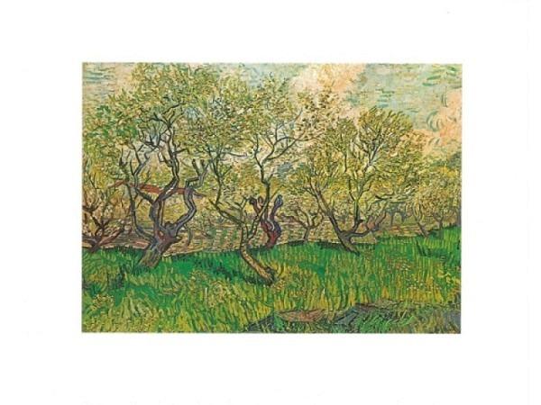 Karte Reiter van Gogh Blühender Obstgarten