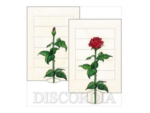 Karte Die Lebende Karte Rose, 10,4x14,4cm