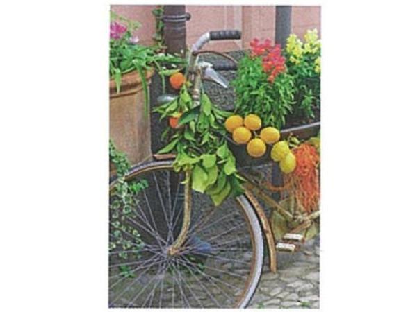 Karte Art Bula 12,2x17,5cm Fahrrad geschmückt mit Blumen