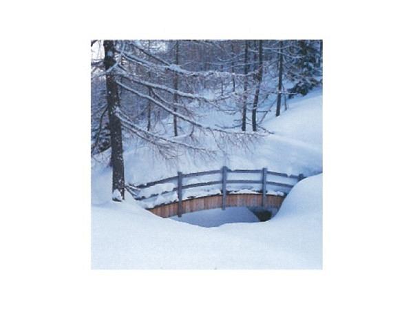 Karte Art Bula 16,8x16,8cm verschneite Holzbrücke im Wald