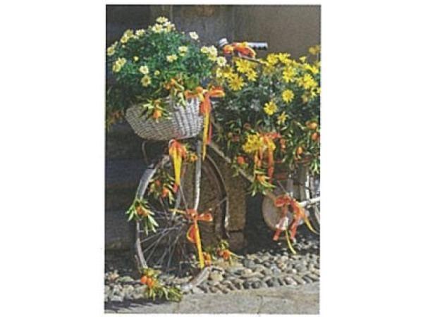 Karte Art Bula 12,2x17,5cm Fahrrad mit vielen Blumen