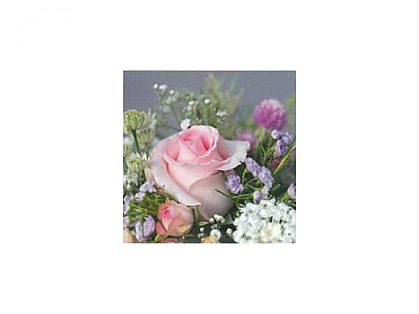 Karte Art Bula 12,2x12,2cm Rosenstrauss rosafarbene Blüte