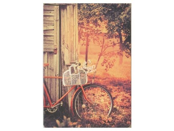 Karte Hartung Feel Good Fahrrad im Wald 12x17cm