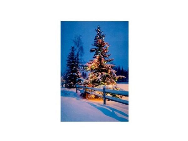Karte ABC Winterkarte Handschuhe mit Tannen 12x17,5cm