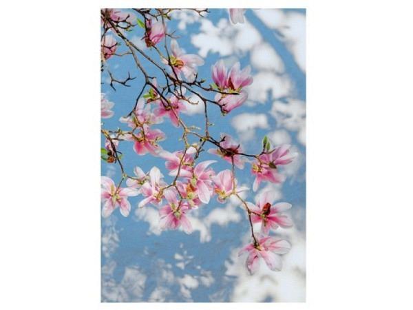 Karte Art Bula 12,2x17,5cm rosa Blumen