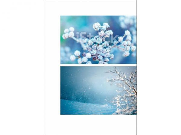 Kartenbox Unicef Winter 11,7x17,3cm, 5x2 Motive