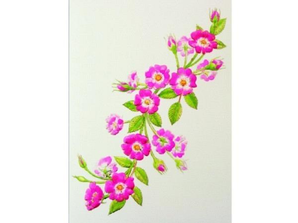 Karte Paula Skene 8er Set Magnolienzweig mit rosa Blüten