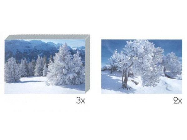 Kartenbox Art Bula 5er Set 7,4x10,5cm, verschiedene Bäume