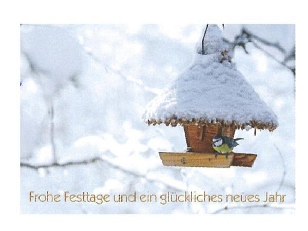 Neujahrskarte Art Bula Frohe Festtage…