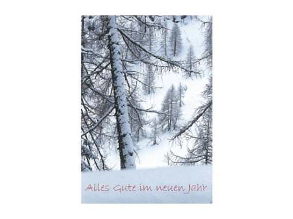 Neujahrskarte Art Bula 12,2x17,5cm, verschneiter, lichter Tannenwald am Berghang, Doppelkarte mit bedrucktem Einlageblatt, inkl. weissem Couvert mit Spitzklappe