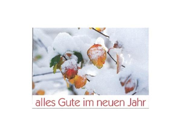 Neujahrskarte Art Bula 12,2x17,5cm, verschneiter Zweig eines Laubbaumes mit ferbigen Blättern, Doppelkarte mit bedrucktem Einlageblatt, inkl. weissem Couvert mit Spitzklappe