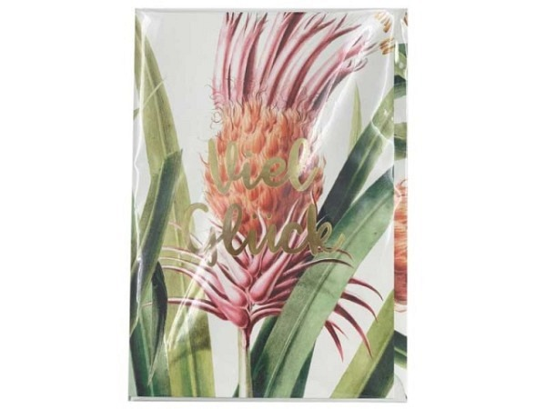 Glückwunschkarte Creative Lab Amsterdam Pflanzen 12x17,5cm weisse Doppelkarte, bedruckt mit Pflanzen