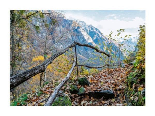 Postkarte Art Bula 10,5x14,8cm weisse Kerzen auf Tisch