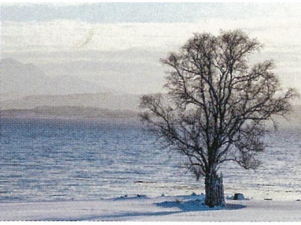 Postkarte Art Bula 10,5x14,8cm  fünf verschiedene Himmel