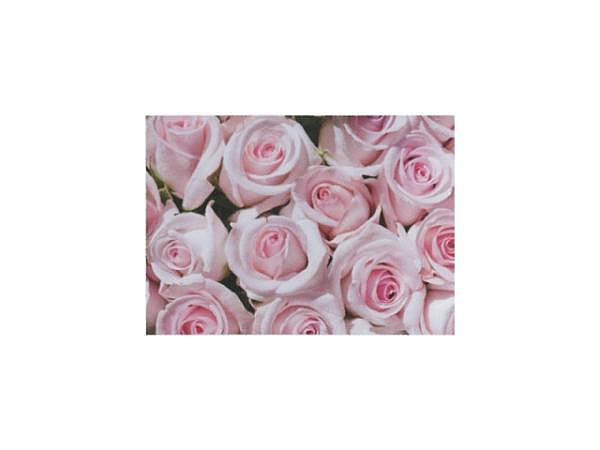 Postkarte Gollong A6 Erdebeeren und Blüten 10,5x14,8cm
