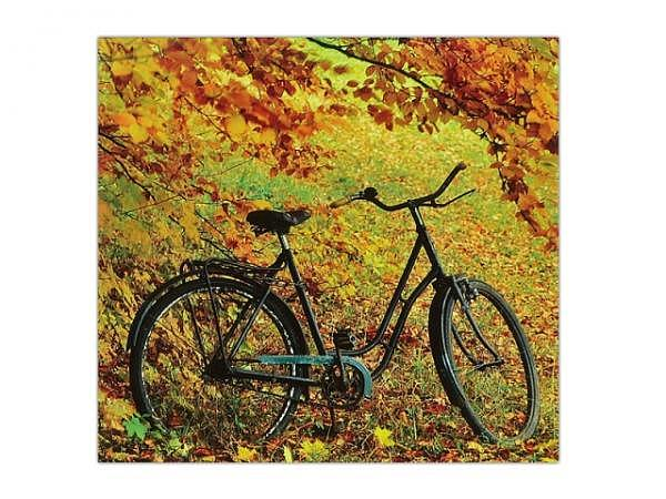 Postkarte Gollong Fahrrad im Herbst 14x14cm, mit Couvert