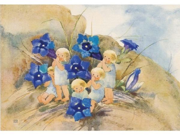 Postkarte Kunstverlag Mili Weber Enzian 10,5x14,8cm