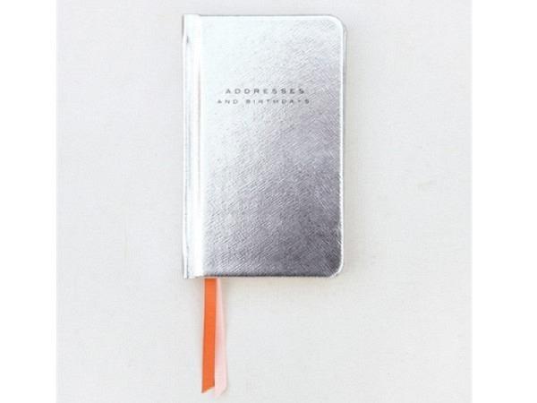 Adressbuch Caroline Gardner Metallic Silver 14x9cm