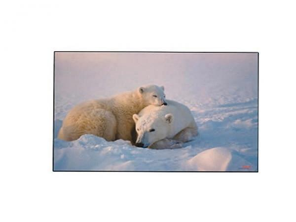 Schreibunterlage Kolma Poster 58x38cm Eisbären