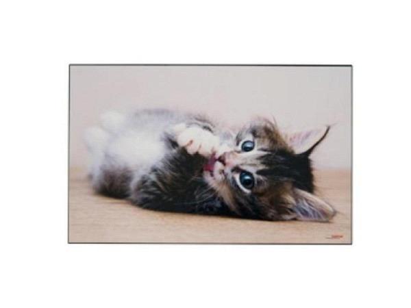 Schreibunterlage Kolma Poster 44x34cm Katze