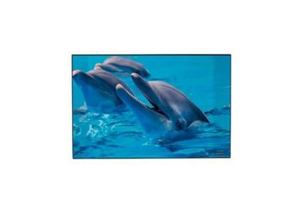 Schreibunterlage Kolma Poster 58x38cm Delfin