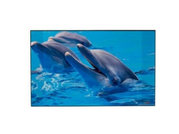 Schreibunterlage Kolma Poster 44x35cm Delfine