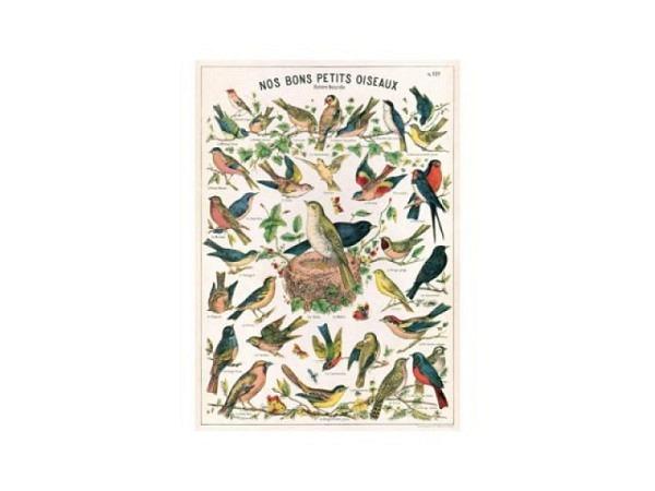 Geschenkpapier Cavallini Bird chart Karte mit Vögeln 50x70cm